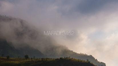 Mafadi 3452